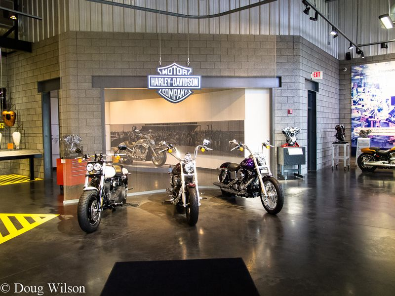KC Harley Plant-3
